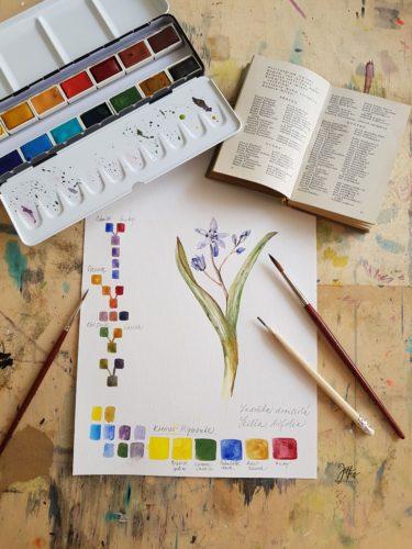 akvarel Kremer Pigmente, ladoňka dvoulistá, malba, míchání barev