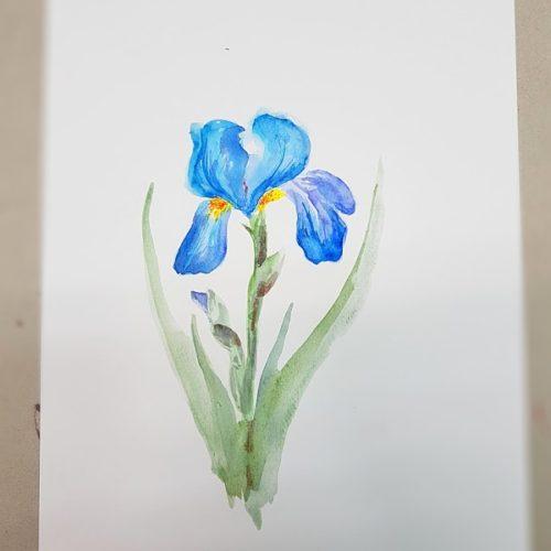 akvarel s Jitkou