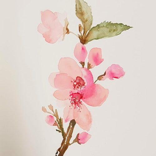výstava botanický akvarel