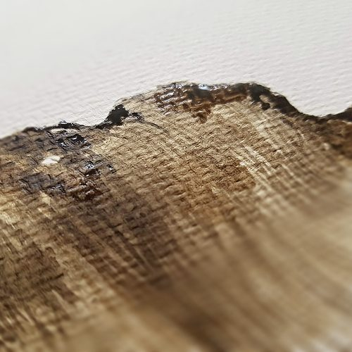 ořechový inkoust