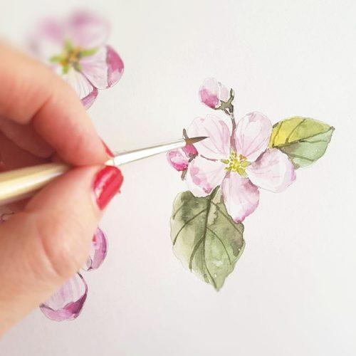 proc zkusit akvarel